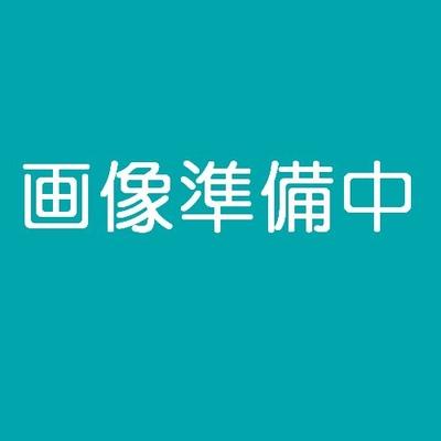 シマホッケ(大)