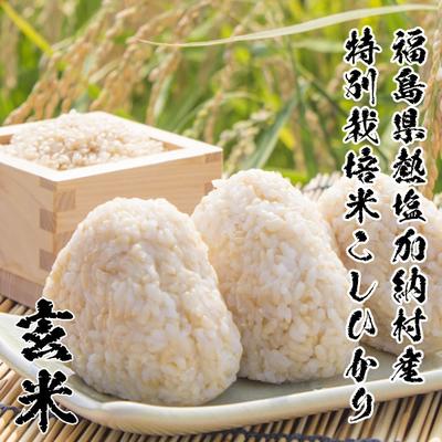 福島県熱塩加納村産 特別栽培米 こしひかり【玄米】