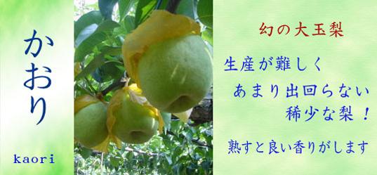 味自慢鎌ヶ谷の梨