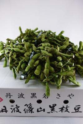 丹波篠山産 黒大豆の枝豆(枝つき) 1kg束×3束(K-3)