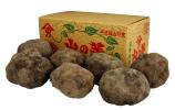 丹波特産 山の芋 秀品3kg