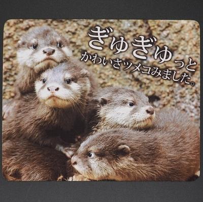 マウスパッド / ラバーマット コツメカワウソ 子供 「ぎゅぎゅっと」 【Original】