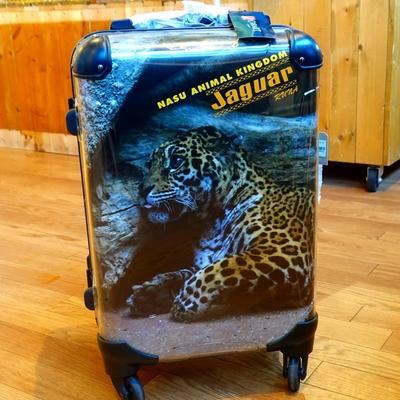 スーツケースフレーム4輪 31L 機内持込サイズ ジャガーWETLANDルナ