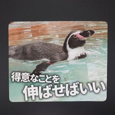 マウスパッド / ラバーマット フンボルトペンギン  「得意なことを伸ばせばいい」 【Original】
