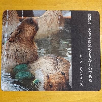 マウスパッド / ラバーマット カピバラ「世界は大きな温泉・・・」  【Original】