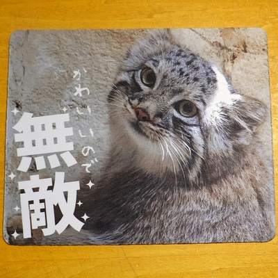 マウスパッド / ラバーマット マヌルネコ   【Original】