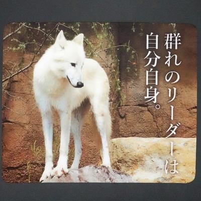 マウスパッド / ラバーマット ホッキョクオオカミ 「群れのリーダーは自分自身。」 【Original】