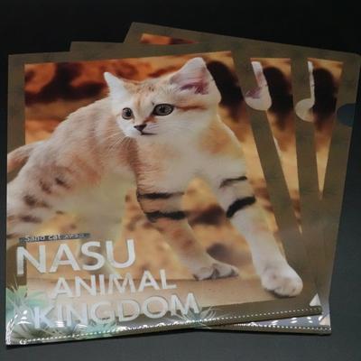 A4クリアファイル3枚set スナネコ(アミーラ立) 【Original】