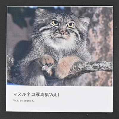 マヌルネコ写真集 Vol.1 【Photo by Shigeo】