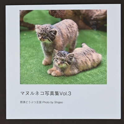 マヌルネコ写真集 Vol.3 【Photo by Shigeo】