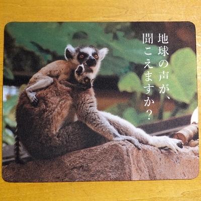 マウスパッド / ラバーマット ワオキツネザル 【Original】