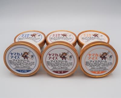 ヤマカノアイス3種セット 6個入り