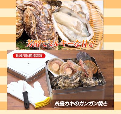 牡蠣のガンガン焼き  (ガンガンBOX・牡蠣ナイフ・軍手付き)