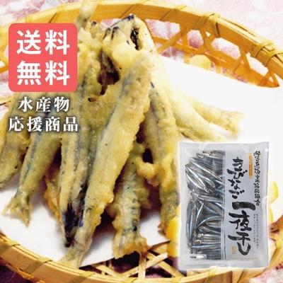 〈水産物応援商品〉塩干キビナゴA(500g)送料無料