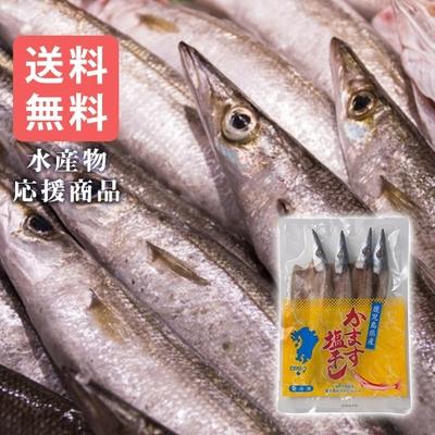 〈水産物応援商品〉塩干カマス(3~4尾)送料無料