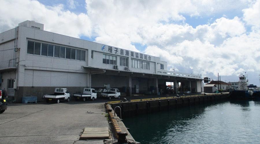 種子島漁業協同組合 外観