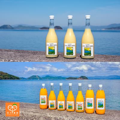 レモン果汁とカンキツジュース の6本セット (送料込)