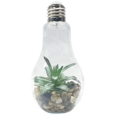 電球型インテリアライト Terrarium B