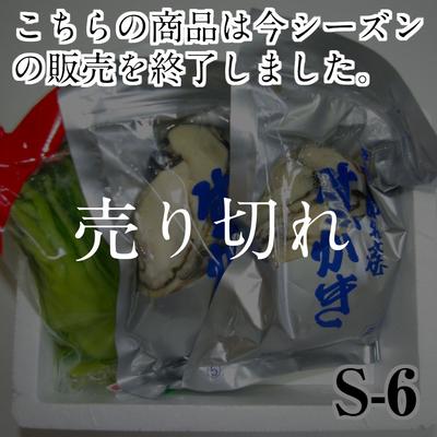 【S-6】カキ1kg+広島菜 (加熱調理用)
