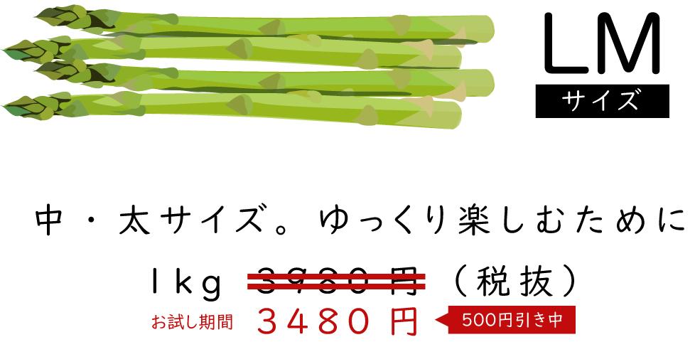 「LMサイズ」中・太サイズゆっくり楽しむために1kg3480円(税抜)500円引き中