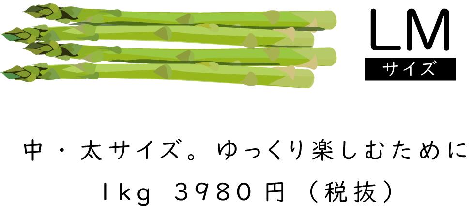 「LMサイズ」中・太サイズゆっくり楽しむために1kg3980円(税抜)