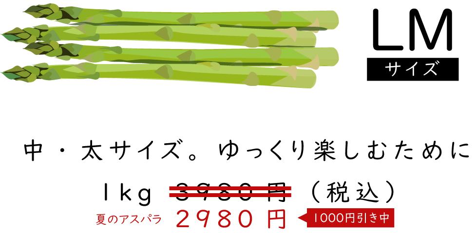 「LMサイズ」中・太サイズゆっくり楽しむために1kg2980円(税込)夏の割引中