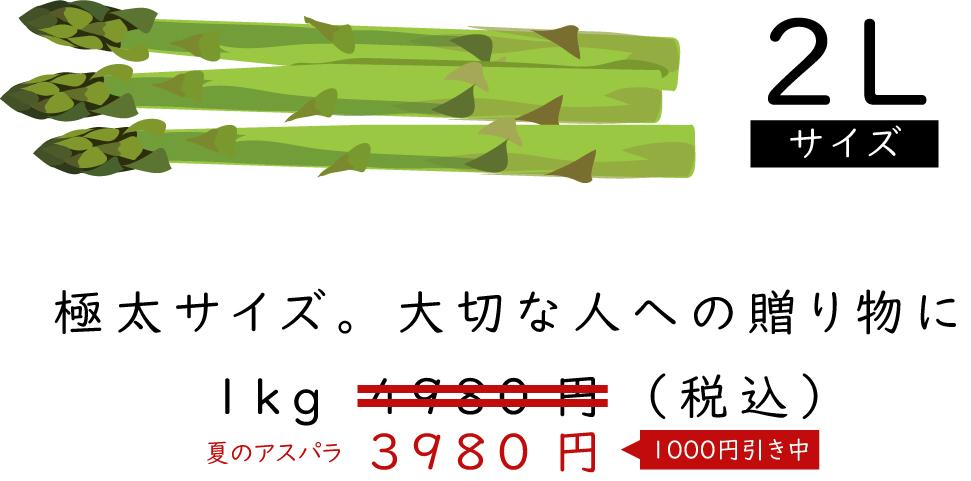 「2Lサイズ」極太サイズ大切な人への贈り物に1kg3980円(税込)夏の割引中