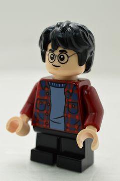 F5712 Harry Potter(#75968)