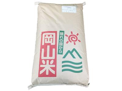 【1年産】玄米 きぬむすめ 10kg