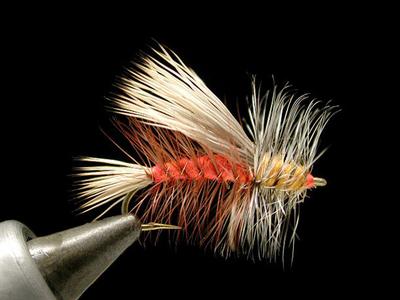 umpqua スティミュレイター orange #8