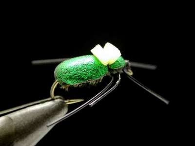 axisco ビートル green #14