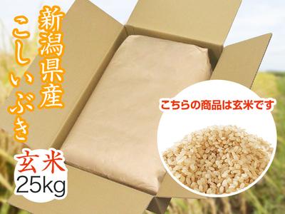 【令和2年産】こしいぶき 玄米(25kg)
