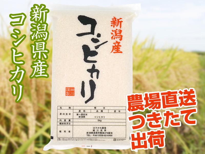 【令和2年産】コシヒカリ 白米(5kg)