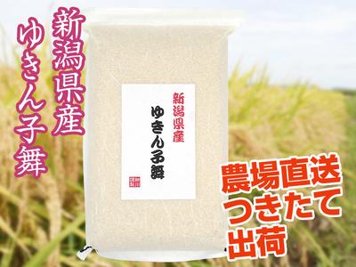 【令和2年産】ゆきん子舞 白米(5kg)