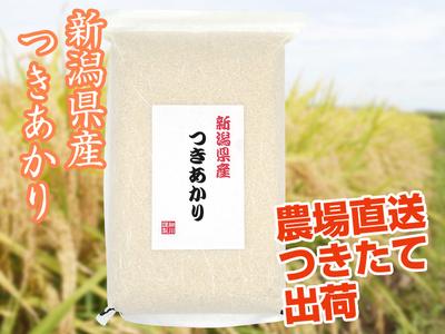 【令和2年産】つきあかり 白米(5kg)