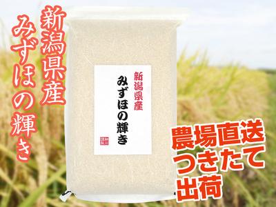 【令和2年産】みずほの輝き 白米(5kg)