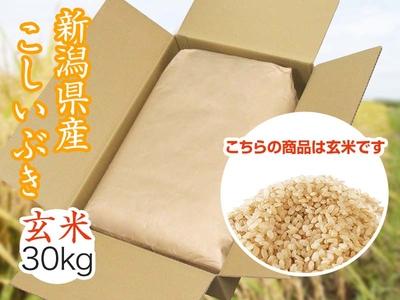 【令和3年新米】こしいぶき 玄米(30kg)(9月中旬出荷開始予定)