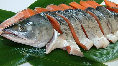 特上新巻鮭切身 (1尾分)2kg