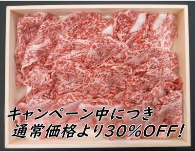 【お肉でスタミナキャンペーン】りんご和牛信州牛 切落し 400g