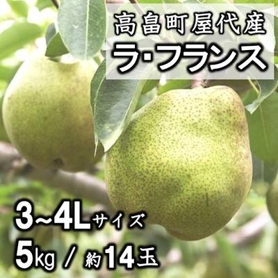 【予約販売】高畠町屋代産 ラ・フランス 3~4L 5kg(約14玉)