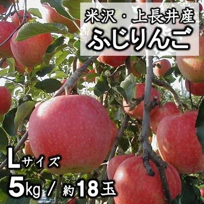 【予約販売】米沢市上長井産 ふじりんご詰合せ L・5kg