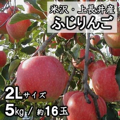 【予約販売】米沢市上長井産 ふじりんご詰合せ 2L・5kg