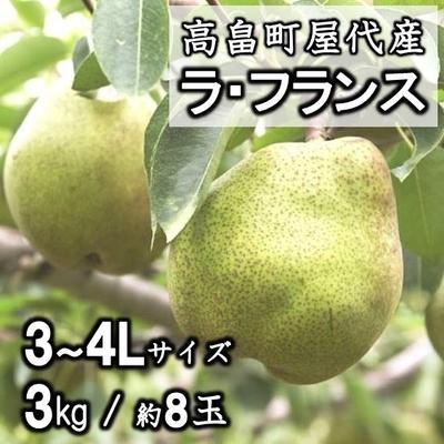 高畠町屋代町産 ラ・フランス3L~4L / 3kg(約8玉)