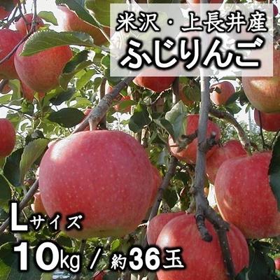 米沢上長井産 ふじりんご L / 10kg(約36玉)