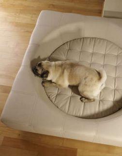 小型犬用ベッド【Cube S・イミテーションレザー】