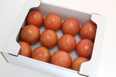 【糖度7度以上】トマト(りんか)2kg箱