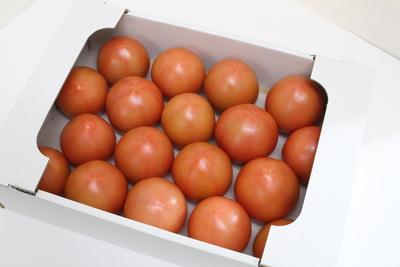 【糖度7度以上】トマト(りんか)3kg箱