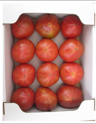 【糖度8.5度以上】スーパーデリシャス2kg箱