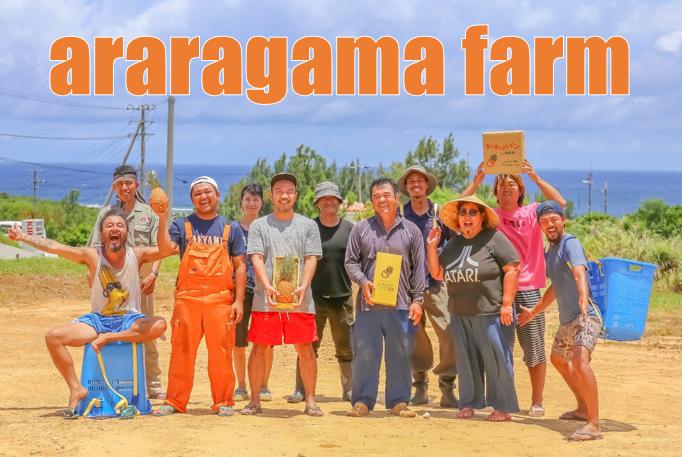 西表島・アララガマ農園から産地直送!