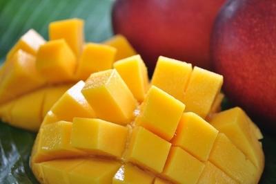 【P】糖度保証優良マンゴー約1kg